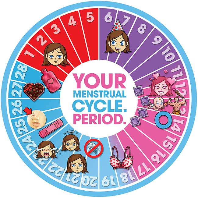 Your-Menstrual-Cycle-650